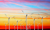 Wind turbines farm on sunset — Stock Photo