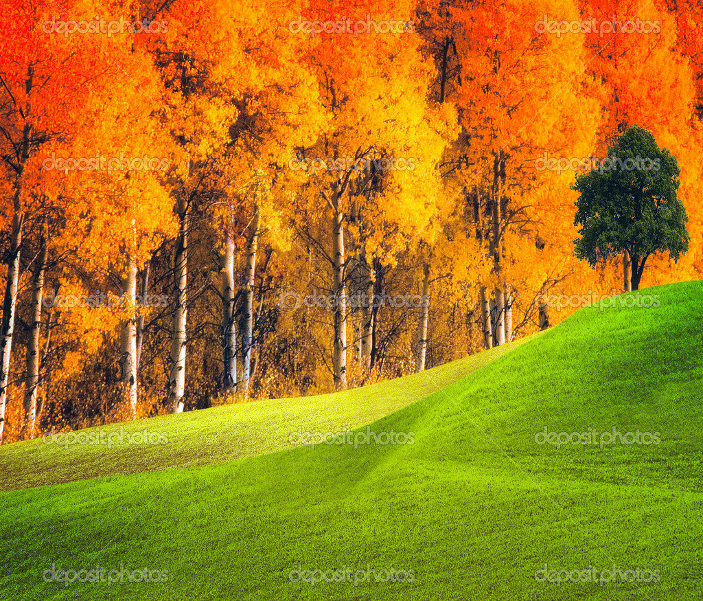 Autumn landscape — Stock Photo #1884156