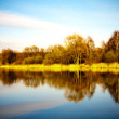 Pond water surface with reflection — Stock Photo #2059588