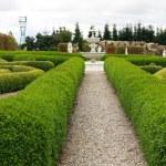 giardino — Foto Stock #2176929