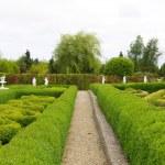 giardino — Foto Stock #2176959