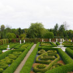 giardino — Foto Stock #2176978