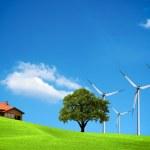 Wind ecology — Stock Photo