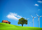 Wind ecology — Stock Photo
