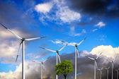 Ecology, Wind turbines — Stock Photo
