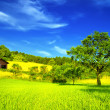 Mountain house in summer — Stock Photo