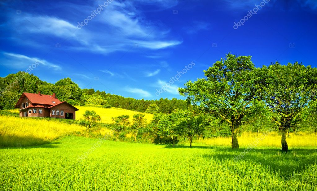 Mountain house in summer stock photo wdgphoto 2544522 - Summer houses mountains ...
