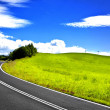 Stock Photo: Road panorama
