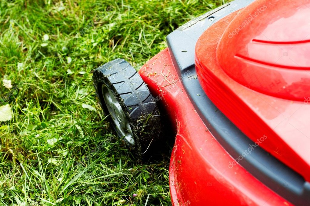 Lawnmower on the grass (grass cut)  Stock Photo #2017732