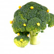 Broccoli trees — Stock Photo #2380720