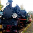 Old steam train — Stock Photo #1904764