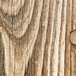 Wood — Stock Photo #2514186