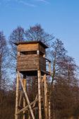 Struttura in legno — Foto Stock
