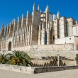 Cathedral of Palmde Mallorca — Stock Photo #2192259