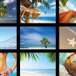 tropic — Stock Photo