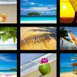 collage tropical — Foto de Stock