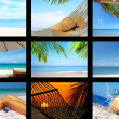 Stockfoto: Tropic collage