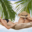 Hammock - Stock Photo
