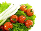 Tomatoes, lettuce and green onions — Stock Photo
