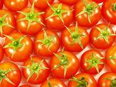 Many tomatoes — Stock Photo