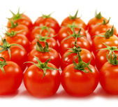 Rows of small red tomatoes — Stock Photo