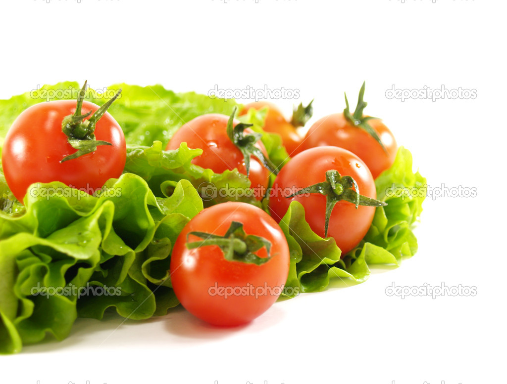 Fresh tomatoes and lettuce on a white background — Stock Photo #2314085