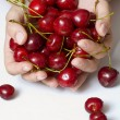 Sweet cherry — Stock Photo #2519244