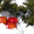 Royalty-Free Stock Photo: Apples in snow
