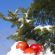 Apples in snow — Stock Photo