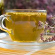 Royalty-Free Stock Photo: Curative tea with origanum