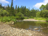The small Siberian river — Stock Photo