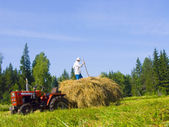 Haymaking in Siberia 16 — Stock Photo