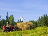 Haymaking in Siberia 16 — Stock Photo