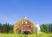Haymaking in Siberia 9 — Stock Photo
