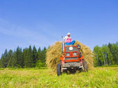 Haymaking in Siberia 7 — Stock Photo