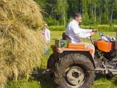 Haymaking in Siberia 3 — Stock Photo