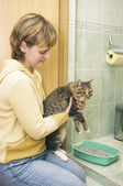 The Girl sits down a cat in a tray — Stockfoto