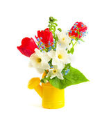 Bouquet of spring flowers i — Stock Photo