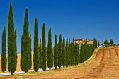 Tuscany view — Stock Photo