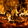 Fire — Stock Photo #1858188