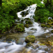 Waterfall — Stock Photo #1914183