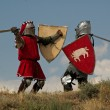 Fight of medieval knights — Stock Photo