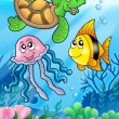 Various sea fishes and animals — Stock Photo #2008202