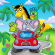 African animals in car on road — Stock Photo