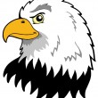 American eagles head — Stock Vector
