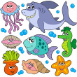 Aquatic animals collection - Stock Vector