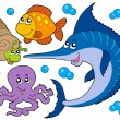 Royalty-Free Stock Vector Image: Aquatic animals collection 3