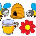 včely a med kolekce — Stock vektor