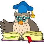 Cartoon owl teacher with book — Stock Vector #2148050