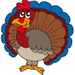 Cartoon turkey — Stock Vector